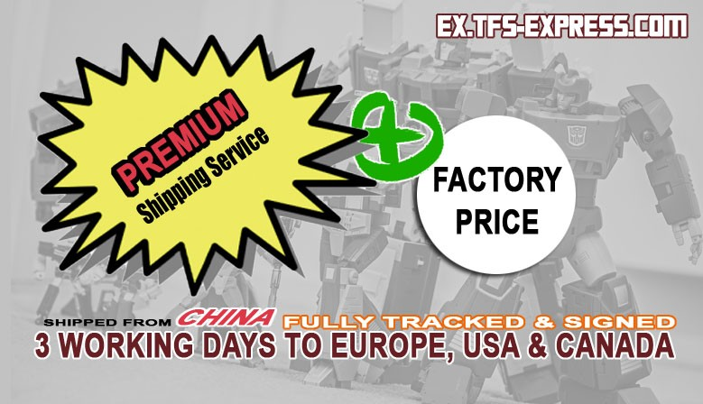TFs Express premiume shipping service plus factory price